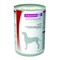Eukanuba Intestinal Canine Húmedo