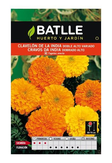BATLLE SEMILLA DE CLAVELÓN INDIA DOBLE ALT VARIADO