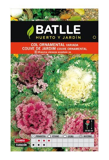 BATLLE SEMILLA DE COL ORNAMENTAL VARIADA