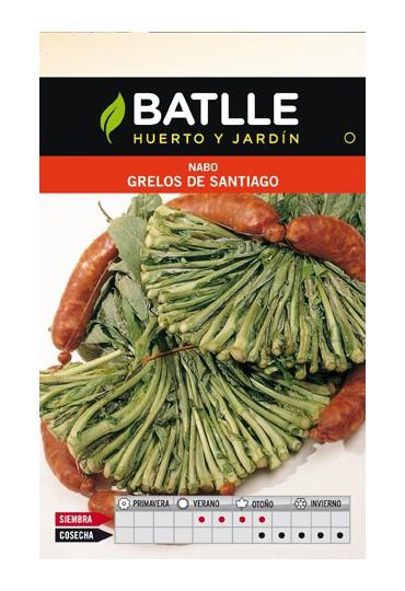 BATLLE SEMILLA NABO GRELOS DE SANTIAGO