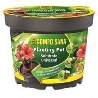 COMPO SANA PLANTING POT 23 CM