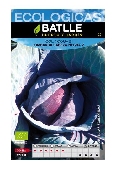 BATLLE SEMILLA DE COL LOMBARDA