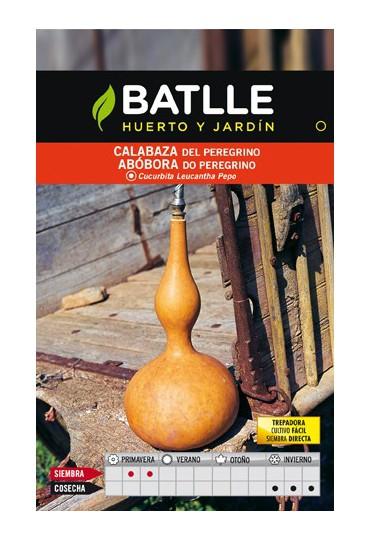 BATLLE SEMILLA DE CALABAZA PEREGRINO