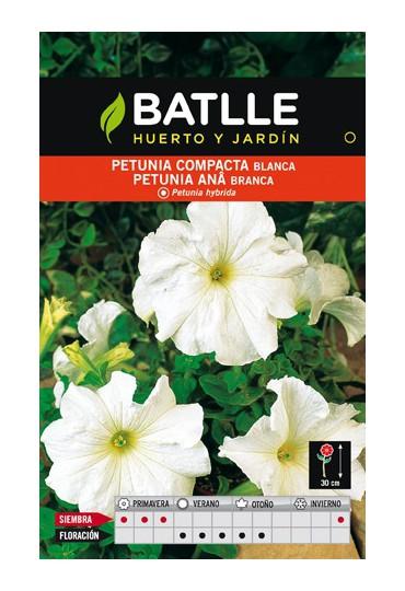 BATLLE SEMILLA DE PETUNIA BLANCA COMPACTA