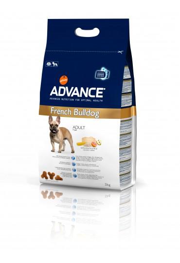 Advance Bulldog Francés