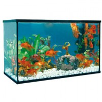 ACUARIO KIT ACUARIO HAPPY PEZ 8L