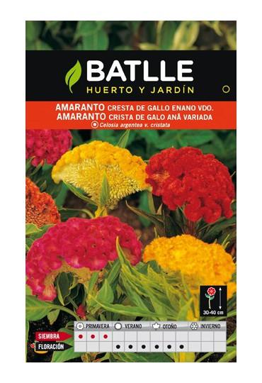 BATLLE CRESTA DE GALLO ENANO