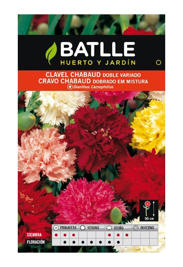 BATLLE SEMILLA DE CLAVEL DOBLE VARIADO