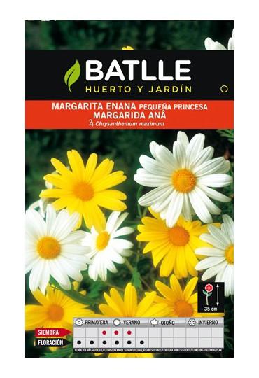 BATLLE SEMILLA DE MARGARITA ENANA PEQ. PRINCESA