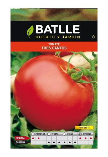 BATLLE SEMILLA TOMATE TRES CANTOS