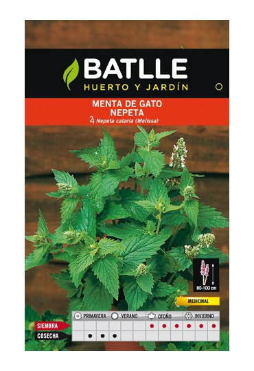 BATLLE SEMILLA DE MENTA DE GATO