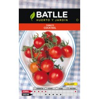 BATLLE TOMATE MINI BELL (TIPO CHERRY)