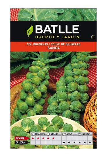 BATLLE COL DE BRUSELAS SANDA