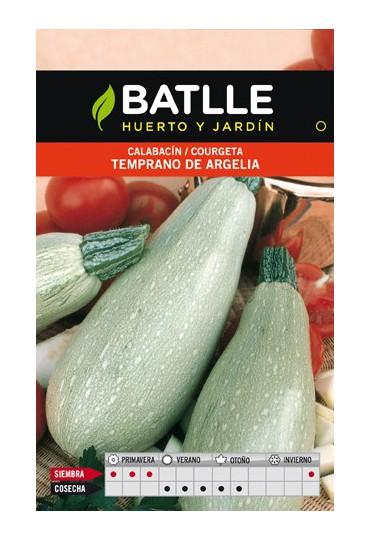 BATLEE SEMILLA DE CALABACIN TEMPRANO DE ARGELIA