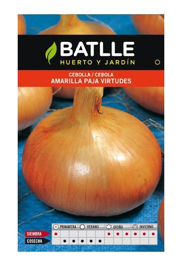 BATLE SEMILLA DE CEBOLLA AMARILLA PAJA VIRTUDES