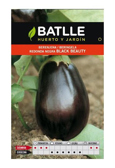 BATLLE SEMILLA DE BERENJENA REDONDA BLACK BEAUTY