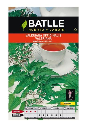BATLLE SEMILLAS VALERIANA OFICINALIS