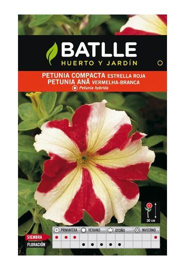 BATLLE SEMILLA DE PETUNIA COMPACTA ROJA