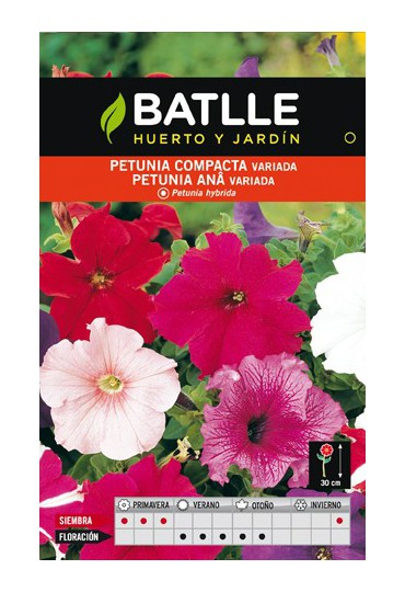 BATLLE SEMILLA DE PETUNIA COMPACTA VARIADA