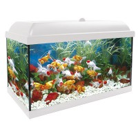ACUARIO KIT INTERIOR AQUALED 100 BIO BLANCO