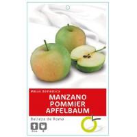 MANZANO BELLEZA DE ROMA
