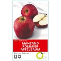 MANZANO STARKING DELICIUS