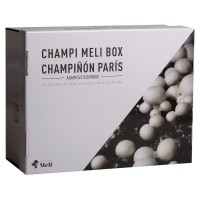 KIT AUTOCULTIVO CHAMPIÑON PARIS