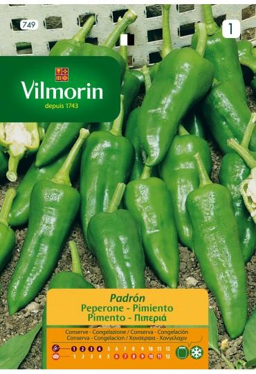 VILMORIN SEMILLAS PIMIENTO PADRÓN