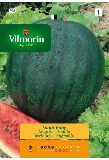 VILMORIN SEMILLAS SANDÍA SUGAR BABY