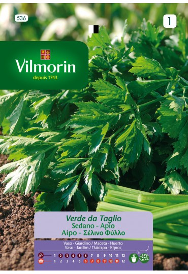 VILMORIN SEMILLAS APIO PARA CORTAR