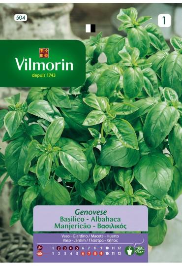 VILMORIN SEMILLA ALBAHACA GRANDE VERDE AROMATICA