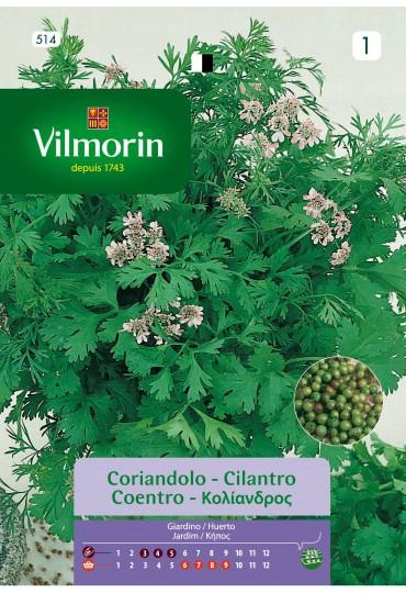 VILMORIN SEMILLAS CILANTRO