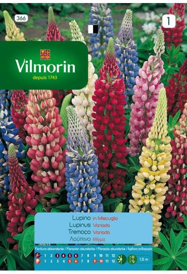 VILMORIN SEMILLAS LUPINUS RUSSELL VARIADA