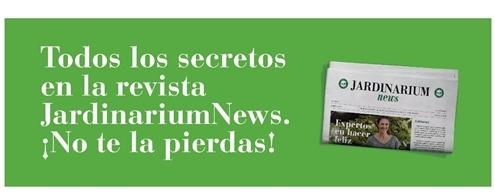 Noticias Jardinería y Plantas